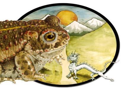 crapaud-dragon